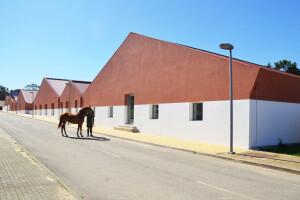 Military Academy Horsemanship and Sport Facilities