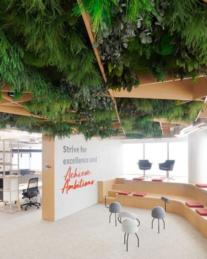 JLL Lisboa Offices - Green decor