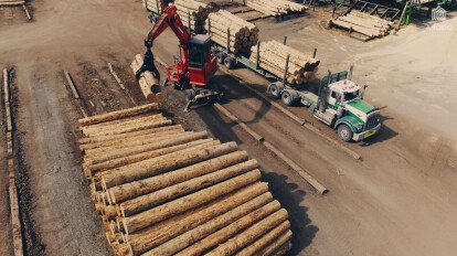 The Future of Wood - The Story of Abodo Eco Timber