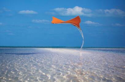 TUUCI Stingray